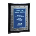 Frosted Lucite on Black Piano Plaque and Color Plate Sales Awards