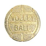 Volleyball Chenille Pin Volleyball Trophy Awards